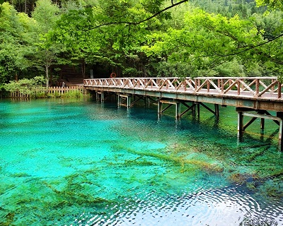8D7N Chengdu-Jiuzhaigou-Leshan-Mt.E'mei, CHINA: $58 for 1 Pax Stay at 5 Sta...