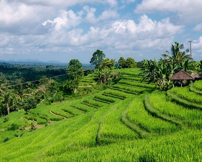 Bali : $140 per pax for 2-Way Air Ticket to Bali via KLM + 20kg Check-In Lu...