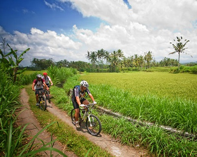 BALI Cycling at Ubud Activity: $56 for Mountain Bike + Safety Helmet + Hote...