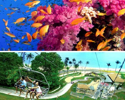 Only $34 per Adult for Admission to Under Water World with Dolphin Lagoon + Luge & Sk...