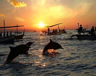 Bali, Indonesia: Only $39 per pax for a 'Sunrise & Meet-A-Dolphin ...